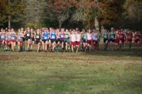 Gallery: Boys Cross Country 4A Kingco Cross Country Championships